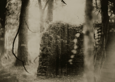 Sally Mann, Deep South #17, 1998,Gelatin silver enlargement print, toned with tea, 94,6 x 119,4