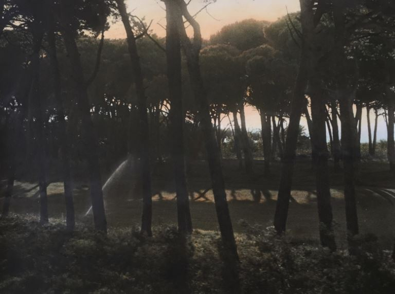 Ann Rhoney, South of France, 1977, painted 2018, Gelatin silver print applied oil paint